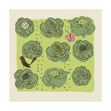 Cabbages in Garden with Butterfly and Bird