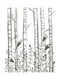 Whimsical-Style Birch Trees and Flower Garden