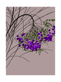 Branches Full of Purple Berries on Gray Background