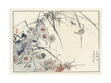 Flowers and Leaves with Spider and Web Reproduction d'art