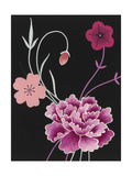 Stylized Chrysanthemum and Cherry Blossoms on Black Background