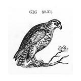 Stylized Hawk Perched on Tree Branch