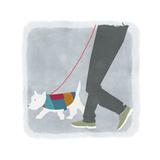 White Dog in Jacket Walking Beside Man's Legs