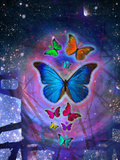 Fantasy Blue Butterfly Insect