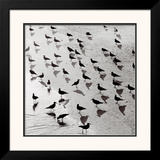 Escher's Seagulls