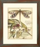Whimsical Dragonflies I