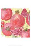 Pomegranate Medley I