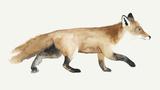 Fox Trot II Reproduction d'art par Grace Popp