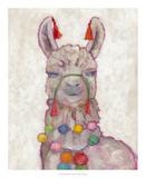 Festival Llama I