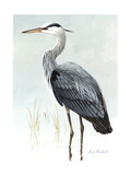 Stamp Art - Great Blue Heron