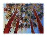 La Quinta Palms