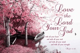 Mark 12:30 Love the Lord Your God (Pink)