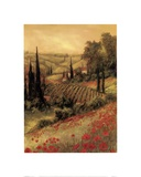 Toscano Valley I