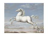 White Horse  1560-99