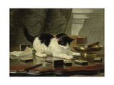 The Cat at Play  by Henriette Ronner  C 1860-78  Belgian-Dutch Painting on Panel