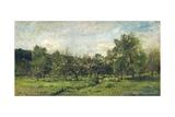 Orchard  C 1865-69