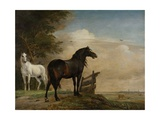 Two Horses in a Meadow Near a Gate  1649