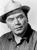 The Flight of the Phoenix  Ernest Borgnine  1965