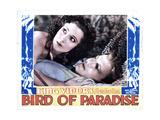 Bird of Paradise  from Left  Dolores Del Rio  Joel Mccrea  1932
