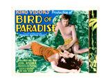 Bird of Paradise  from Left: Dolores Del Rio  Joel Mccrea  1932