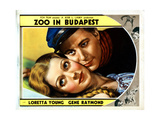 Zoo in Budapest  from Left  Loretta Young  Gene Raymond  1933