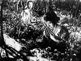 The Seven Samurai  (AKA Shichinin No Samurai)  Isao Kimura  Keiko Tsushima  1954