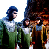 Planet of the Apes  Roddy Mcdowall  Lou Wagner  Kim Hunter  1968