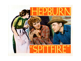 Spitfire  from Left  Katharine Hepburn  Ralph Bellamy  1934