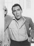 Heller in Pink Tights  Anthony Quinn  1960