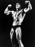 Stay Hungry  Arnold Schwarzenegger  1976
