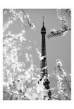 Spring Eiffel BW
