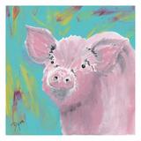 Farm Life Pig