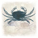 Crab Coast Vision