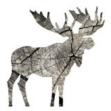 Wood Moose White
