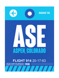 ASE Aspen Luggage Tag II