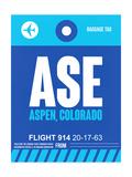 ASE Aspen Luggage Tag II