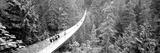Capilano Bridge  Suspended Walk  Vancouver  British Columbia  Canada