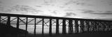 Silhouette of a Railway Bridge  Fort Bragg  California  USA