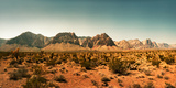 View of the Red Rock Canyon National Conservation Area  Near Las Vegas  Clark County  Nevada  USA
