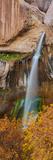 View of the Calf Creek Falls  Grand Staircase-Escalante National Monument  Utah  USA