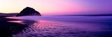 View of Beach at Sunrise  Morro Rock  Morro Bay  San Luis Obispo County  California  USA
