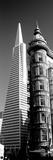 Low Angle View of Towers  Columbus Tower  Transamerica Pyramid  San Francisco  California  USA