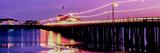 Pier Illuminated at Dusk  Stearns Wharf  Santa Barbara  California  USA