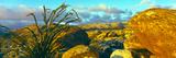 Sunrise Alpenglow Near Bow Willow Campground  Anza Borrego Desert State Park  California  USA