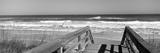 Boardwalk Leading Towards a Beach  Playlinda Beach  Canaveral National Seashore  Titusville