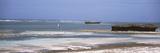 Low Tide on the Beach  Indian Ocean  Kenya