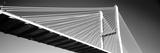 Low Angle View of a Bridge  Talmadge Memorial Bridge  Savannah  Georgia  USA