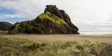 Lion Rock on Piha Beach  Waitakere Ranges Regional Park  Auckland Region  North Island  New Zealand