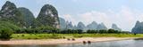 Water Buffaloes (Bubalus Bubalis) in a River  River Li  Guilin