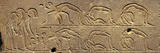 Egyptian Hieroglyphs on the Wall of Temple  Luxor Museum  Luxor  Egypt
